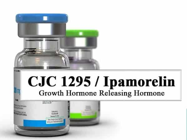 Ipamorelin Growth Hormone