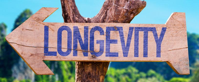 reishi mushroom longevity