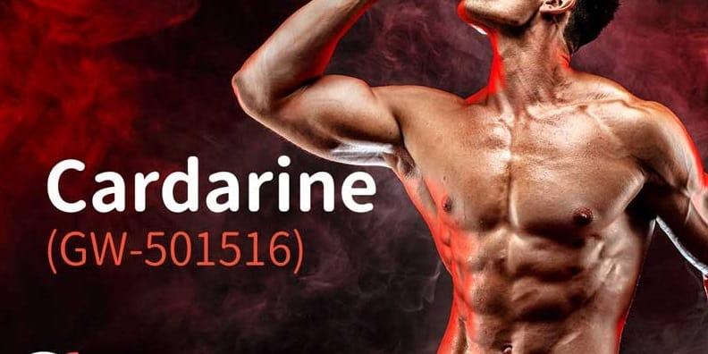 Cardarine GW501516 Australia
